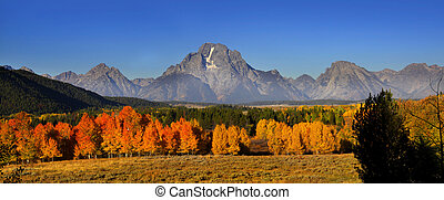 Autumn in Grand Tetons - Fall foliage in Grand Tetons...