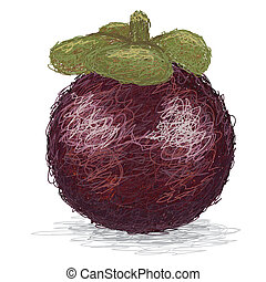 mangosteen - closeup illustration of a whole single...