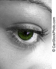 Pretty Green Eye - A macro shot of a pretty womans green eye...