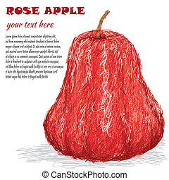 rose apple - closeup illustration of fresh rose apple fruit...