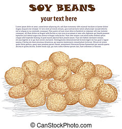 soy beans - closeup illustration of heap of soy beans...