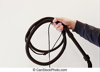 bullwhip coiled in hand against white background