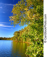 Sweeney Lake Northwoods Wisconsin - Beautiful foliage along...