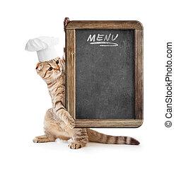 funny kitten in cook hat holding menu blackboard