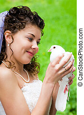 Bride with dove - Photo of beautiful bride holding white...