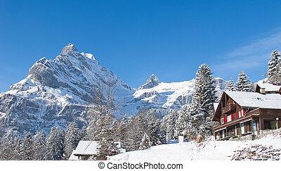 Winter landscape - Typical swiss winter season landscape...