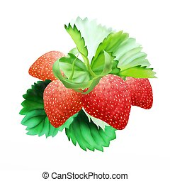 Hand Drawing of  Fresh Ripe Red Strawberries