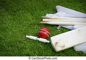 cricket ball, bat pads with stumps and bail on grass