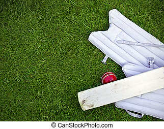 cricket ball, bat and pads on grass with copy space