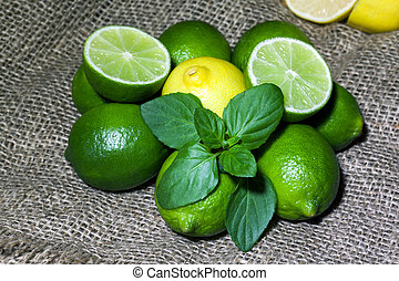 Fresh limes and lemon with mint