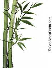 Watercolor painting of bamboo - Original art, watercolor...