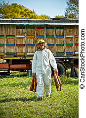 Apiarist at work in his apiary