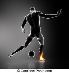 Most stressed sportsman joints ANKLE