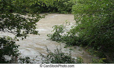 Flood river - Muddy flood river Water level rising to tree...