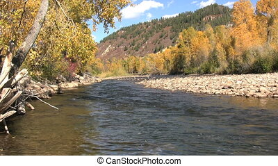 Southwest Colorado River in Fall - fall colors along the...