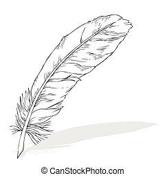 writing feather with shadow