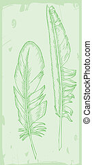 writing feather on green background