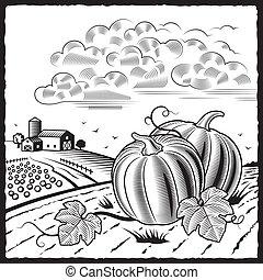Landscape with pumpkins b&w - Retro landscape with pumpkins...