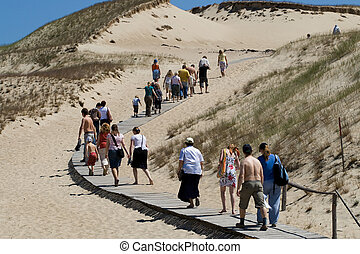 Large group of tourists