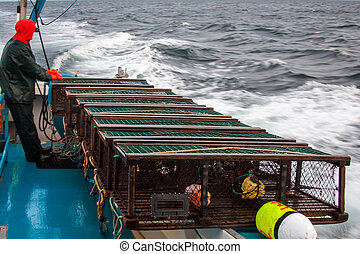 Fisherman - Traps lined up on the side of a lobster boat