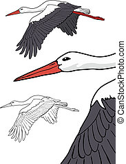 Flying stork, vector illustration - Flying stork set, vector...