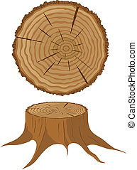 Cross section of tree and stump - Cross section of tree and...