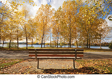 Park bench by a lake with fall colors