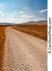Dirt Road between Plowed Fields in Israel, Spring