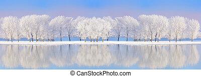 Danube river in winter time
