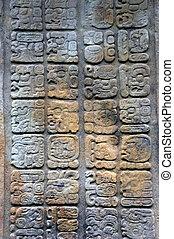 Ancient Mayan hieroglyphs. Quirigua ruins. Guatemala