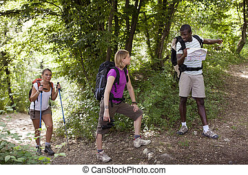 people with backpack doing trekking in wood