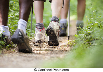 shoes of people trekking in wood and walking in row - group...