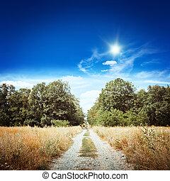 Rural road. Summer day landscape