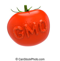 GMO-tomato II - Genetically modified food concept