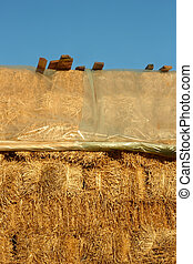 Straw pile covered with plastic fil - Big pile of straw...