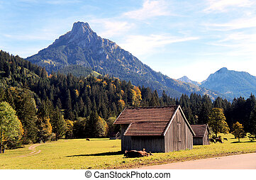 The Allgaeu in autumn - View on the Aggenstein in the...