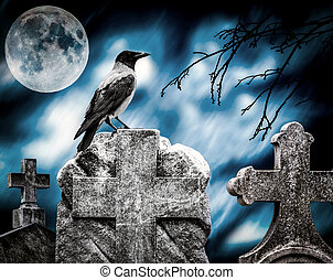 Crow sitting on a gravestone in moonlight at cemetery