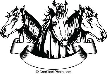 głowy, konie