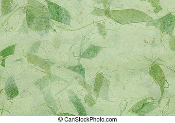 Dry leaf paper texture