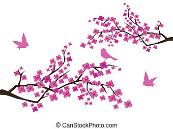 plum branches - vector plum branches with birds