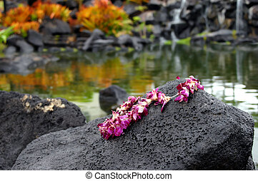 Discarded Lei - Pink plumeria lei is spread across a large...