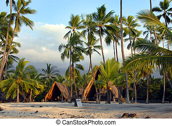 Hawaiian Sacred Site - Thatched huts sit beneath palm trees...