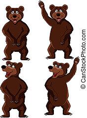 Bear cartoon - Vector illustration of bear cartoon