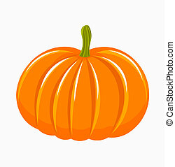 Pumpkin illustration - Pumpkin isolated - vector...