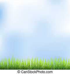 Green grass and blue sky Vector illustration