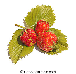 Strawberry - Three berries of strawberry on green sheet...