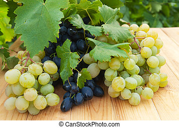 Grapes on wooden table near vineyard