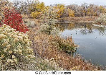 gravel pit into natural area - gravel pit converted into...