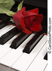 Rose on piano - Sheet music with rose piano