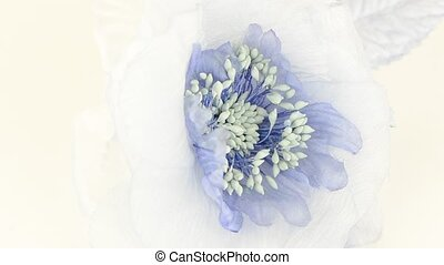 Blue fabric flower